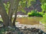 2008 - 06/21 Picnic at Angel Valley