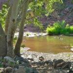 smsa 080621 picnic at angel valley 01